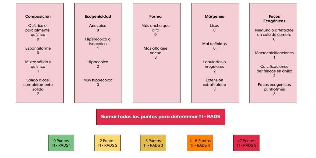 2.Figura 1- Sistema de puntuación TI-RADS 2017 (9)
